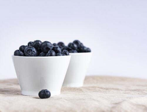 Brainy Blueberries